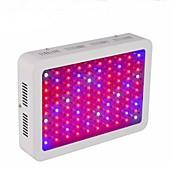 LEDグローライト クールホワイト レッド ブルー 1個
