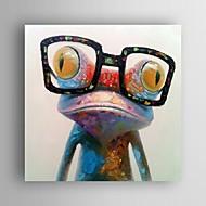 Kézzel festett Állat Pop Négyzet,Modern Egy elem Vászon Hang festett olajfestmény For lakberendezési