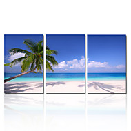 Landskab Afslapning Fotografisk Romantik Tre Paneler Vertikal Print Vægdekor For Hjem Dekoration