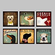Animal Quadros Emoldurados / Conjunto Emoldurado Wall Art,PVC Preto Sem Cartolina de Passepartout com frame Wall Art