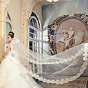 cheap Wedding Veils-One-tier Lace Applique Edge Wedding Veil Cathedral Veils 53 157.48 in (400cm) Satin Tulle