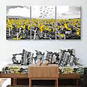 billige Trykk-e-home® strukket lerret kunst solsikke dekormaling sett med 3