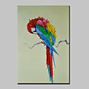 זול ציורי שמן-ציור שמן צבוע-Hang מצויר ביד - חיות מודרני עם מסגרת