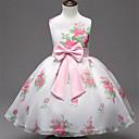 preiswerte Kleider für Mädchen-Baby Mädchen Blumig / Schleife Ausgehen Blumen Ärmellos Kleid