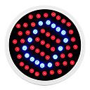 baratos Luz LED Ambiente-2.6W lm Lâmpadas crescentes 60 leds SMD 2835 Azul Vermelho AC 85-265V