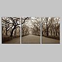 baratos Brincos-Canvas Art Landscape O Central Park Conjunto de 3