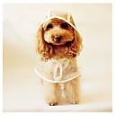 billige Hundeleker-Hund Regnfrakk Hundeklær Ensfarget Plast Kostume For kjæledyr Vår & Vinter / Sommer Herre / Dame Fritid / hverdag
