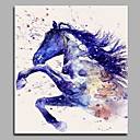 cheap Animal Paintings-Print Hand Painted - Animals Artistic Birthday Office / Business Canvas