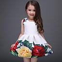 ieftine Rochii Bebeluși-Copii Fete Dulce Zilnic / Concediu Floral Imprimeu Fără manșon Poliester Rochie Alb