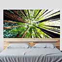 رخيصةأون ديكورات الزفاف-مناظر طبيعية النباتية ملصقات الحائط لواصق لواصق حائط مزخرفة, الفينيل تصميم ديكور المنزل جدار مائي جدار