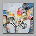 זול ציורי שמן-ציור שמן צבוע-Hang מצויר ביד - חיות מודרני ללא מסגרת פנימית / בד מגולגל