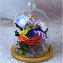 זול מתנות לחתונה-לא מותאם אישית זכוכית צלמיות ופסלים כלה זוג חתונה יום הולדת