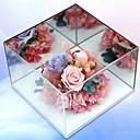 זול מתנות לחתונה-לא מותאם אישית - מתנה יצירתית בשבילה כלה שושבינה עמיתים הורים חברים חתונה תודה
