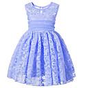 זול חולצות לבנים-שמלה חוטי זהורית אביב קיץ ללא שרוולים שרוולים קצרים יומי ליציאה אחיד פרחוני הילדה של חמוד פעיל ורוד מסמיק כחול בהיר כחול בהיר