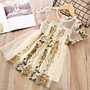 tanie Sukienki dla dziewczynek-Brzdąc Dla dziewczynek Aktywny / Słodkie Wyjściowe Stokrotka Kwiaty Wycięcia Krótki rękaw Sukienka / Bawełna