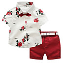 cheap Boys' Clothing Sets-Toddler Boys' Active / Basic Holiday / Going out Solid Colored / Floral Print Short Sleeve Cotton Clothing Set