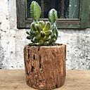 ieftine Flor Artificiales-Flori artificiale 1 ramură Clasic Rustic Plante suculente Față de masă flori