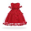 preiswerte Kleider für Babys-Baby Mädchen Retro Ausgehen / Geburtstag Solide Langarm Knielang / Asymmetrisch Baumwolle / Polyester Kleid Rosa