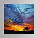 povoljno Slike za cvjetnim/biljnim motivima-Hang oslikana uljanim bojama Ručno oslikana - Sažetak Moderna Bez unutrašnje Frame / Valjani platno