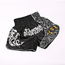 cheap Punching Bags & Boxing Pads-Muay Thai Shorts / Boxing Shorts For Martial Arts, MMA, Grappling, UFC Elastic Waistband Embroidery Lightweight, Quick Dry, Wearable Polyester Adults / Kids - Silver / Golden ANOTHERBOXER