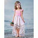 tanie Sukienki dla dziewczynek-Dziecko Dla dziewczynek Podstawowy Solidne kolory Bez rękawów Bawełna Sukienka Rumiany róż