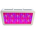 voordelige RC auto's-300 W Groeiende lichtarmatuur 13200 lm 150 LED-kralen Krachtige LED Warm wit Wit Rood 85-265 V