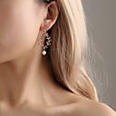preiswerte Halsketten-Damen Klassisch Tropfen-Ohrringe Ohrringe Stilvoll Schmuck Gold / Silber Für Alltag 1 Paar