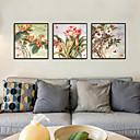 זול אומנות ממוסגרת-דפוס אומנות ממוסגרת סט ממוסגר - פרחוני / בוטני פוליסטירן תצלום וול ארט