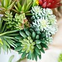 זול פרחים מלאכותיים-פרחים מלאכותיים 1 ענף קלאסי מודרני צמחים עסיסיים פרחים לשולחן