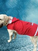 billige Sexet dametøj-Kat Hund Hættetrøjer Regnfrakke Hundetøj Ensfarvet Rød Blå Oxford-stof Terylene Kostume For kæledyr Herre Dame Afslappet/Hverdag Vanntett