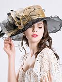 abordables Ceintures Tendance-Plume / Soie / Organza Fascinators / Chapeaux avec 1 Mariage / Occasion spéciale / Fête / Soirée Casque