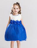 tanie Sukienki dla dziewczynek-Dzieci Dla dziewczynek Kwiatowy Jendolity kolor / Kwiaty Bez rękawów Sukienka / Bawełna
