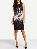 cheap Women's Dresses-Women's Going out Sophisticated Sheath Dress - Floral Black, Print / Slim
