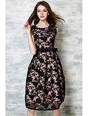cheap Women's Dresses-Women's Going out Vintage A Line Dress - Embroidered Lace / Spring / Fall