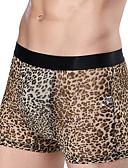 abordables Ropa interior para hombre exótica-Hombre Malla Boxers Cortos Un Color / Varios Colores / Sexy 1 Pieza Media cintura Marrón Negro Gris Oscuro XL XXL XXXL