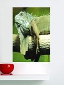 זול טרנינגים וקפוצ'ונים לגברים-חיות מדבקות קיר מדבקות קיר מטוס מפת מדבקות קיר מדבקות קיר מדבקות קיר דקורטיביות, ויניל קישוט הבית מדבקות קיר זכוכית / אמבטיה קיר