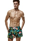 ieftine Pantaloni Bărbați si Pantaloni Scurți-Bărbați Activ / De Bază Pantaloni Chinos / Pantaloni Scurți Pantaloni - Floral Tropical Leaf, Imprimeu Trifoi / Sport / Vară / Plajă