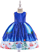 povoljno Haljine za djevojčice-Djeca Dijete koje je tek prohodalo Djevojčice Vintage Aktivan Božić Party Praznik Snowflake Bez rukávů Do koljena Haljina Plava