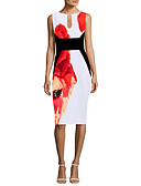 cheap Women's Dresses-Women's Party Slim Sheath Dress - Floral V Neck Fall Blue Red Royal Blue L XL XXL
