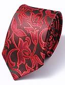 cheap Men's Ties & Bow Ties-Men's Work / Basic Necktie - Floral / Paisley