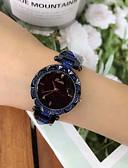 זול שעונים-בגדי ריקוד נשים שעון מכני קווארץ מתכת אל חלד עמיד במים אנלוגי אופנתי - סגול קפה כחול