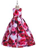 povoljno Haljine za djevojčice-Djeca Djevojčice Aktivan slatko Cvjetni print Print Bez rukávů Maxi Haljina Blushing Pink