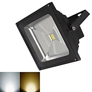 tanie Naświetlacze-1 szt. 20 W 3000-3200/6000-6500 lm 1 Koraliki LED COB Ciepła biel / Zimna biel 12 V