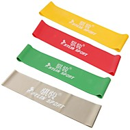 Set Of 4 Latex Resistance Bands / Exercise Bands, Workout Excercise Pilates Yoga Bands Loop