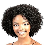 Women Synthetic Wig Short Curly Black African American Wig Natural Wigs Costume Wig