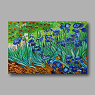 Hand-Painted Abstract Oil Painting Canvas Van Gogh repro Blue Irises Field Home Deco one Panel