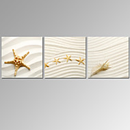 cheap Prints-VISUAL STAR®3 Panel Starfish Canvas Prints Kitchen Room Decor Beach Canvas Wall Art Ready to Hang