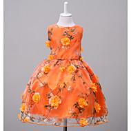 Παιδιά Κοριτσίστικα Λουλουδάτο Εξόδου / Σαββατοκύριακο Φλοράλ Αμάνικο Πολυεστέρας Φόρεμα Πορτοκαλί
