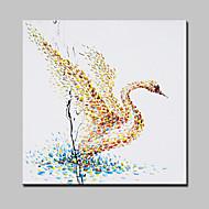 billiga Djurporträttmålningar-oljemålningar moderna abstrakta väggdekorationer bild handen målade med sträckt ram redo att hänga
