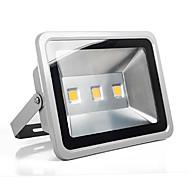 tanie Naświetlacze-Reflektory LED Wodoodporne / Dekoracyjna Ciepła biel / Zimna biel 85-265 V Oświetlenie zwenętrzne